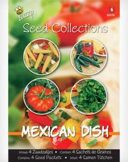 buzzycollectionmexicandish